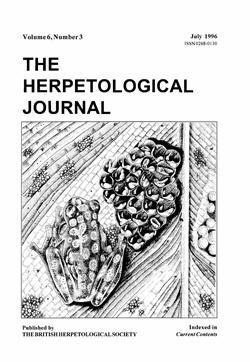 Volume 6, Number 3, July 1996